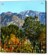 Wasatch Mountains In Autumn Acrylic Print by Tracie Kaska