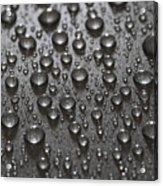 Water Drops Acrylic Print by Frank Tschakert
