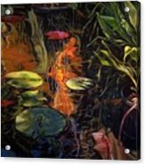 Water Garden Series A Acrylic Print by Patricia Reed