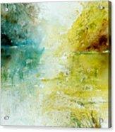Watercolor 24465 Acrylic Print by Pol Ledent