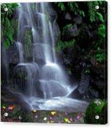 Waterfall Acrylic Print by Carlos Caetano