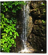 Waterfall In Forest Acrylic Print by Elena Elisseeva