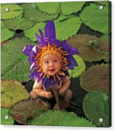 Waterlily Acrylic Print by Anne Geddes