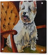 Westie Angel Dusty Acrylic Print by Donna Pierce-Clark