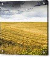 Wheat Fields With Storm Acrylic Print by John Trax