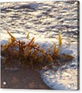 When The Water Hits The Sand Acrylic Print by E Luiza Picciano
