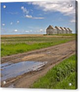 White Sheds On A Prairie Farm In Spring Acrylic Print by Louise Heusinkveld