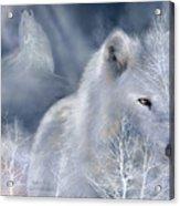 White Wolf Acrylic Print by Carol Cavalaris