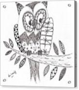 Who Says The Owl Acrylic Print by Paula Dickerhoff