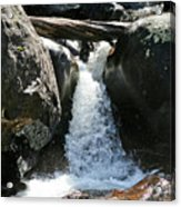 Wild Basin Waterfall Acrylic Print by Brent Parks
