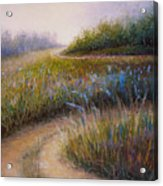 Wildflower Road Acrylic Print by Susan Jenkins