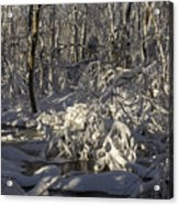 Winter At Borden Brook Acrylic Print by Andrew Pacheco