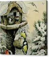 Winter Bird Table With Blue Tits Acrylic Print by Carl Donner