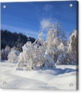 Winter Blanket Acrylic Print by Mike  Dawson