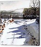 Winter Lane Sowood Acrylic Print by Paul Dene Marlor