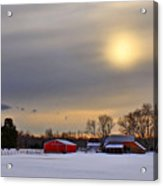 Winter Sun Acrylic Print by Evelina Kremsdorf