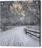 Winter Sunrise Acrylic Print by Sebastian Musial