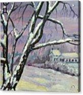 Winter Tree Acrylic Print by Saga Sabin