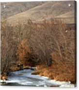 Winter Yakima River With Hills And Orchard Acrylic Print by Carol Groenen