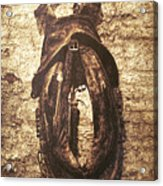 Without Horse Acrylic Print by Wim Lanclus
