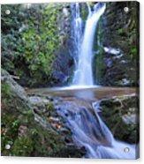 Wolf Creek Falls Acrylic Print by Alan Lenk