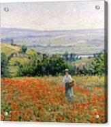 Woman In A Poppy Field Acrylic Print by Leon Giran Max