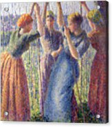 Women Planting Peasticks Acrylic Print by Camille Pissarro