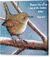 Wren In Snow With Bible Verse Acrylic Print by Joyce Geleynse