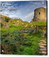 Ye Olde Path  Acrylic Print by Adrian Evans
