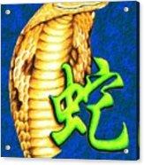 Year Of The Snake Acrylic Print by Sheryl Unwin