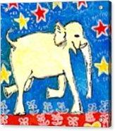 Yellow Elephant Facing Right Acrylic Print by Sushila Burgess