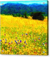 Yellow Hills Acrylic Print by Wingsdomain Art and Photography