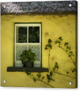 Yellow House County Clare Ireland Acrylic Print by Teresa Mucha