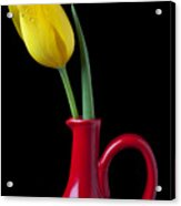 Yellow Tulip In Red Pitcher Acrylic Print by Garry Gay