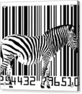 Zebra Barcode Acrylic Print by Michael Tompsett