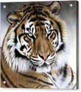 ZEN Acrylic Print by Sandi Baker