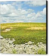 Blueberry Field With Blue Sky And Clouds In Maine Canvas Print by Keith Webber Jr