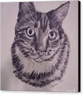 Pet Portraits  Canvas Print by Lucia Grilletto