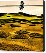#15 At Chambers Bay Golf Course - Location Of The 2015 U.s. Open Tournament Canvas Print by David Patterson