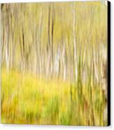 Abstract Forest Scenery  Canvas Print by Gry Thunes