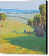 Along Rectortown Road Canvas Print by Armand Cabrera