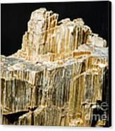 Asbestos Canvas Print by Millard H. Sharp