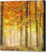 Autumn Gold Canvas Print by Ian Hufton