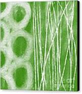 Bamboo Canvas Print by Linda Woods