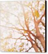 Beneath A Tree  14 5284  Diptych  Set 1 Of 2 Canvas Print by Ulrich Schade