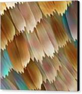 Butterfly Wing Scales Canvas Print by Power And Syred