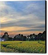 Buttonwood Farm Canvas Print by Andrea Galiffi