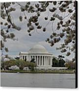 Cherry Blossoms With Jefferson Memorial - Washington Dc - 01137 Canvas Print by DC Photographer
