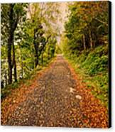 Country Lane Canvas Print by Adrian Evans