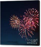 Fireworks Series Vi Canvas Print by Suzanne Gaff